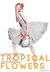 [스타일] Tropical Flowers - 2012 S/S Fashion Trend